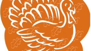 light-brown-turkey