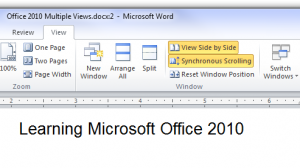 Microsoft Office 2010 Views