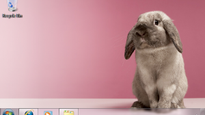 Windows 7 Theme - Rabbit (Easter)