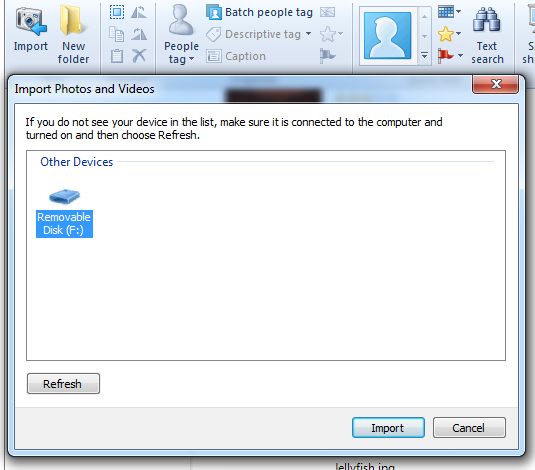 Windows Live Photo Gallery - Import images from camera or other media.