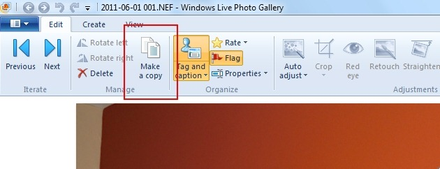 How to make a JPEG copy of a RAW file format