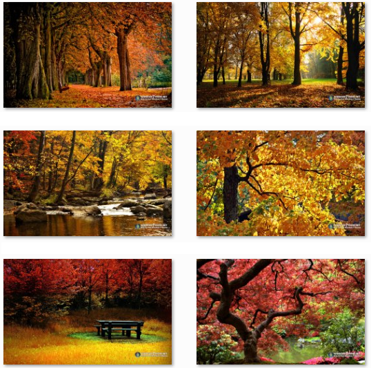 Autumn Wallpapers - Windows 7 theme