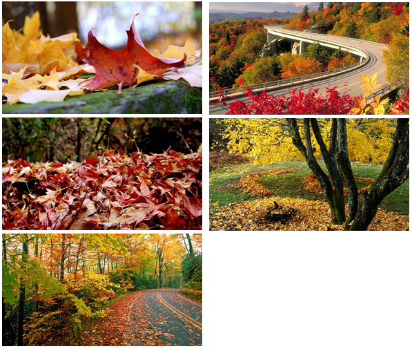 Fall wallpapers - Windows 7 theme