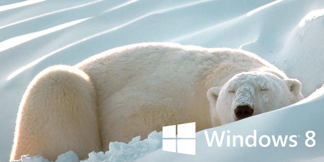 Hibernate Windows 8 bear