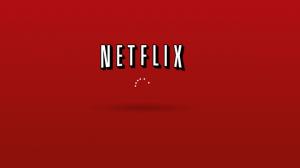 Win 8 Netflix app