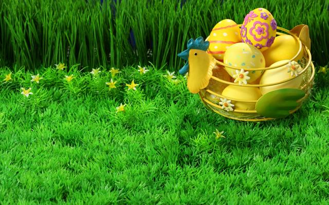 eggs-grass basket