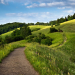 Path leading through the rolling hills, Kaiserstuhl, Baden-Würt