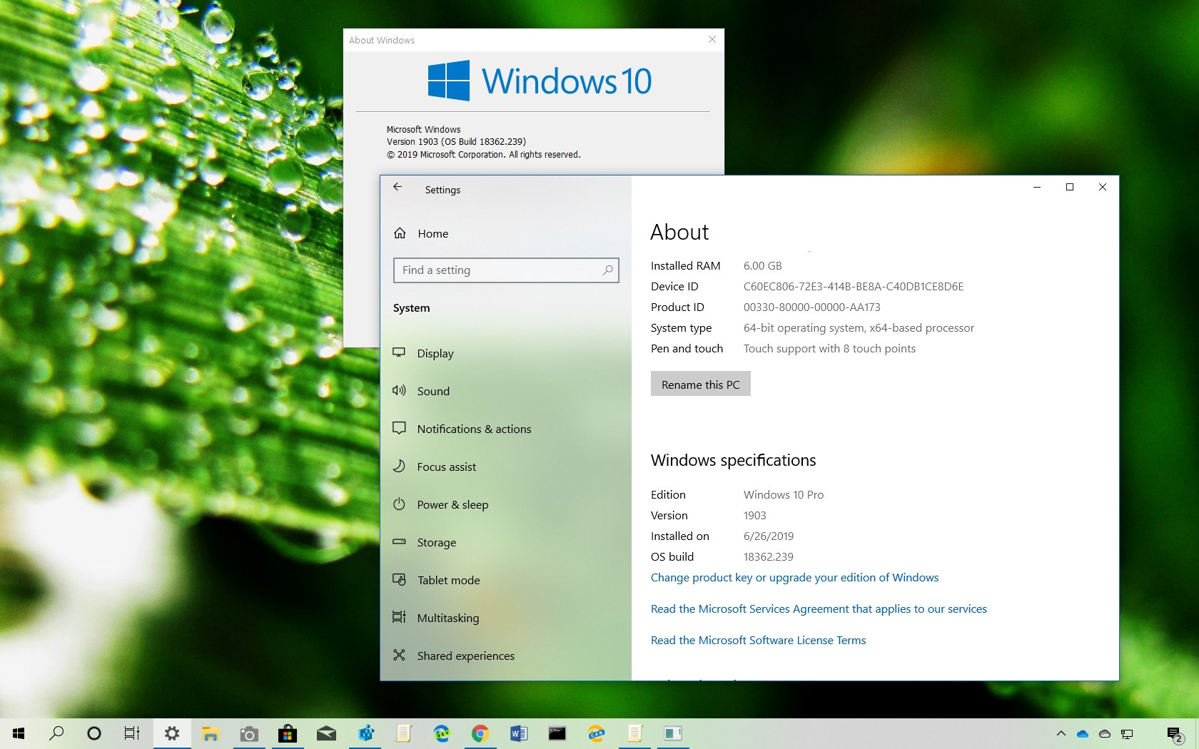 Determine Windows 10 version installed on PC