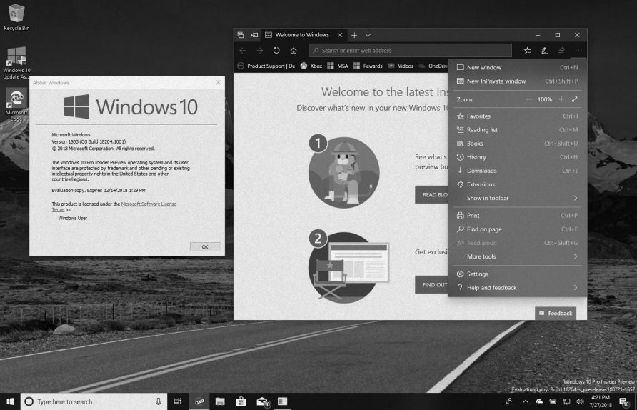Windows 10 version 1903 (19H1) in this weekly digest
