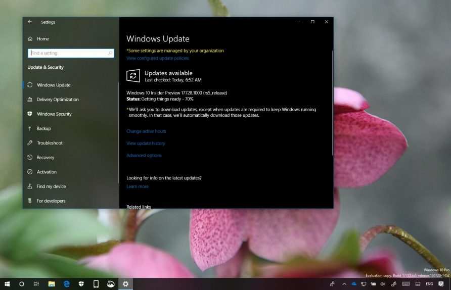 Windows 10 build 17728