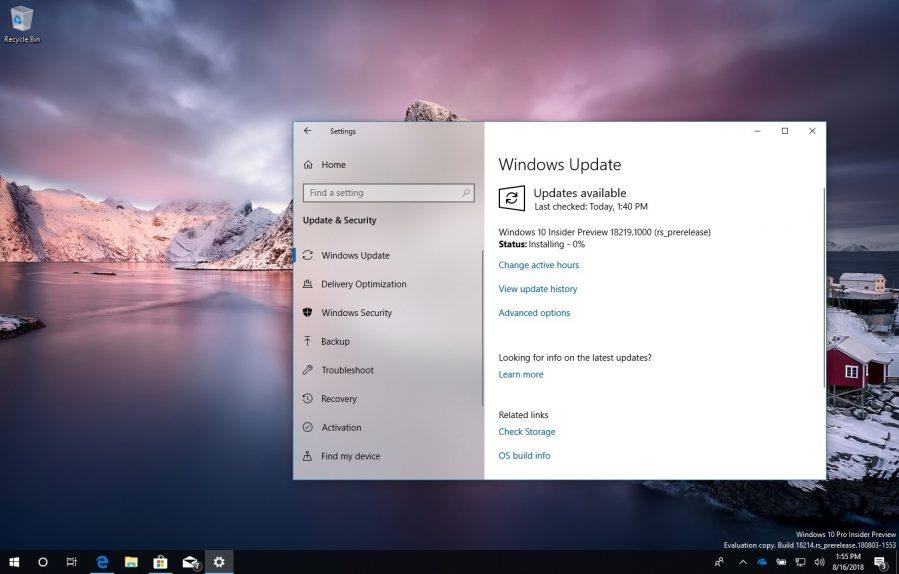 Windows 10 build 18219