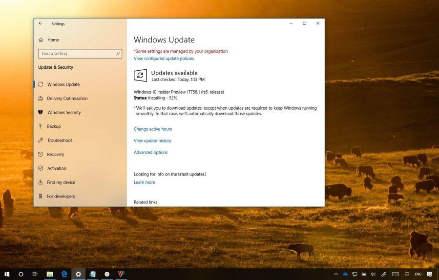 Windows 10 build 17758