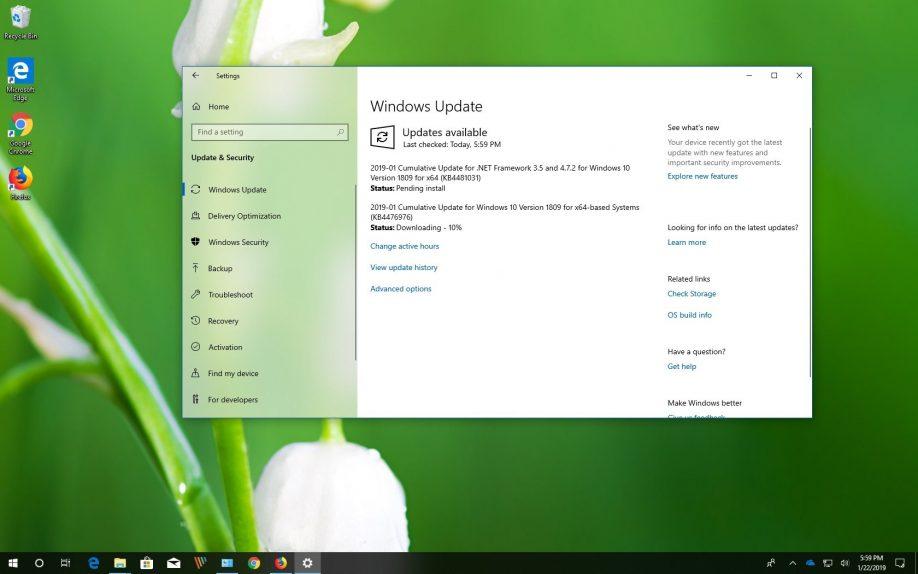 KB4476976 for Windows 10 version 1809, October 2018 Update