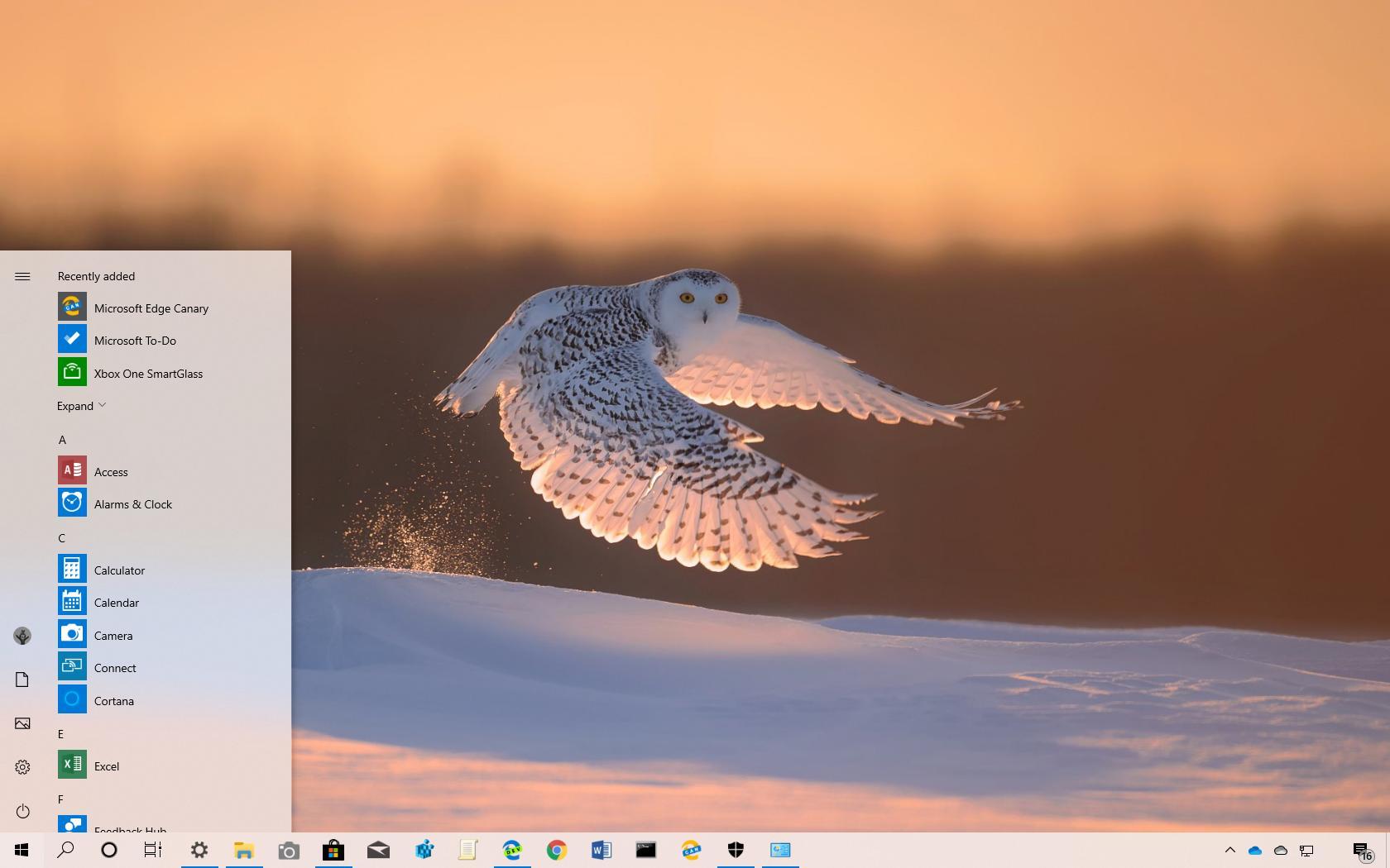 Polar Animals theme for Windows 10