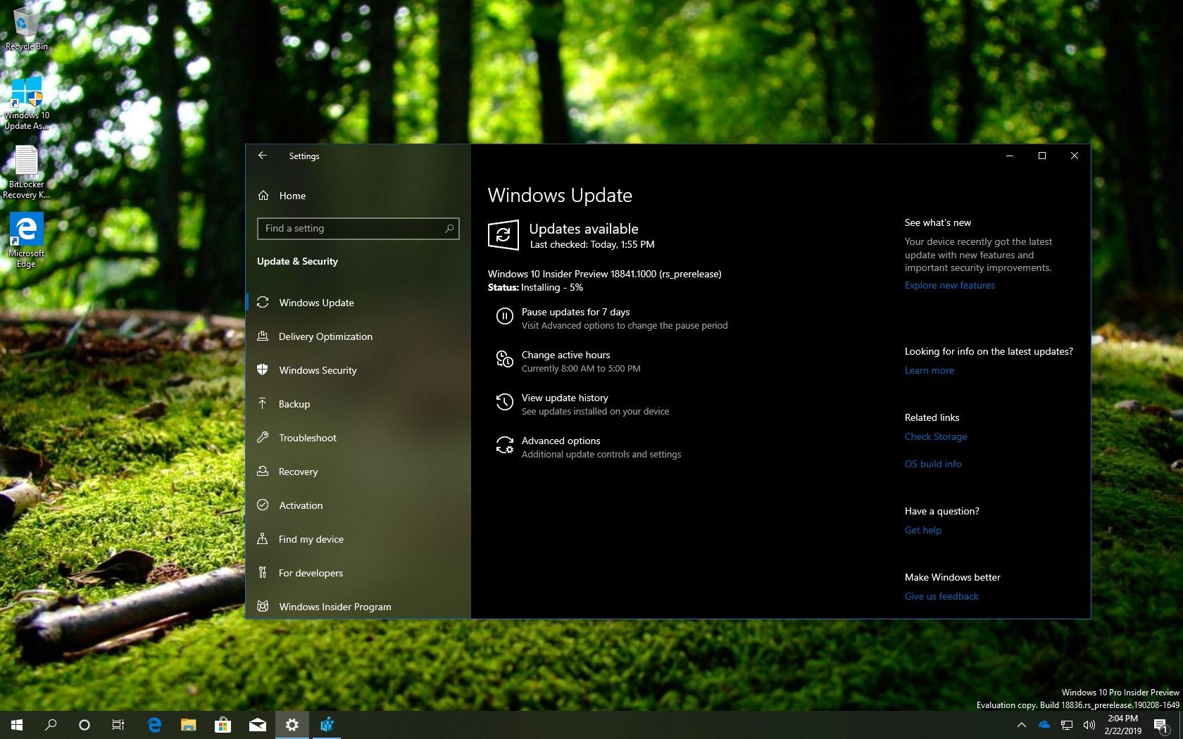Windows 10 build 18841