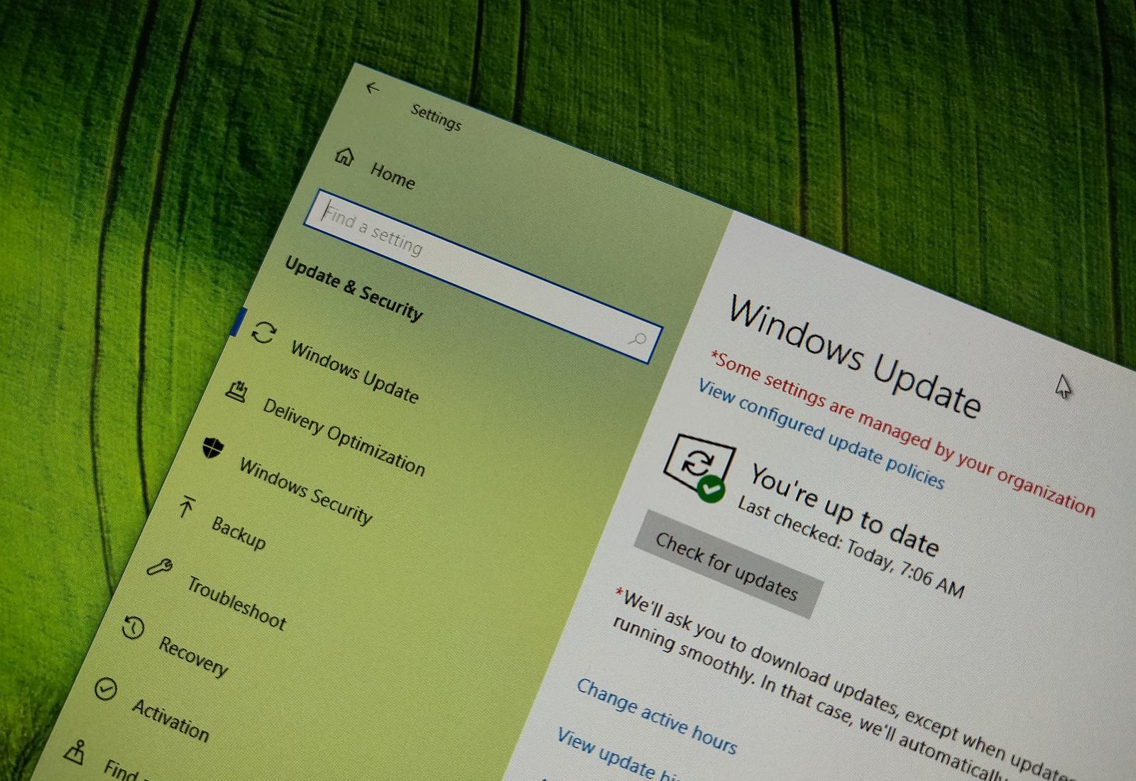 Windows 10 update settings