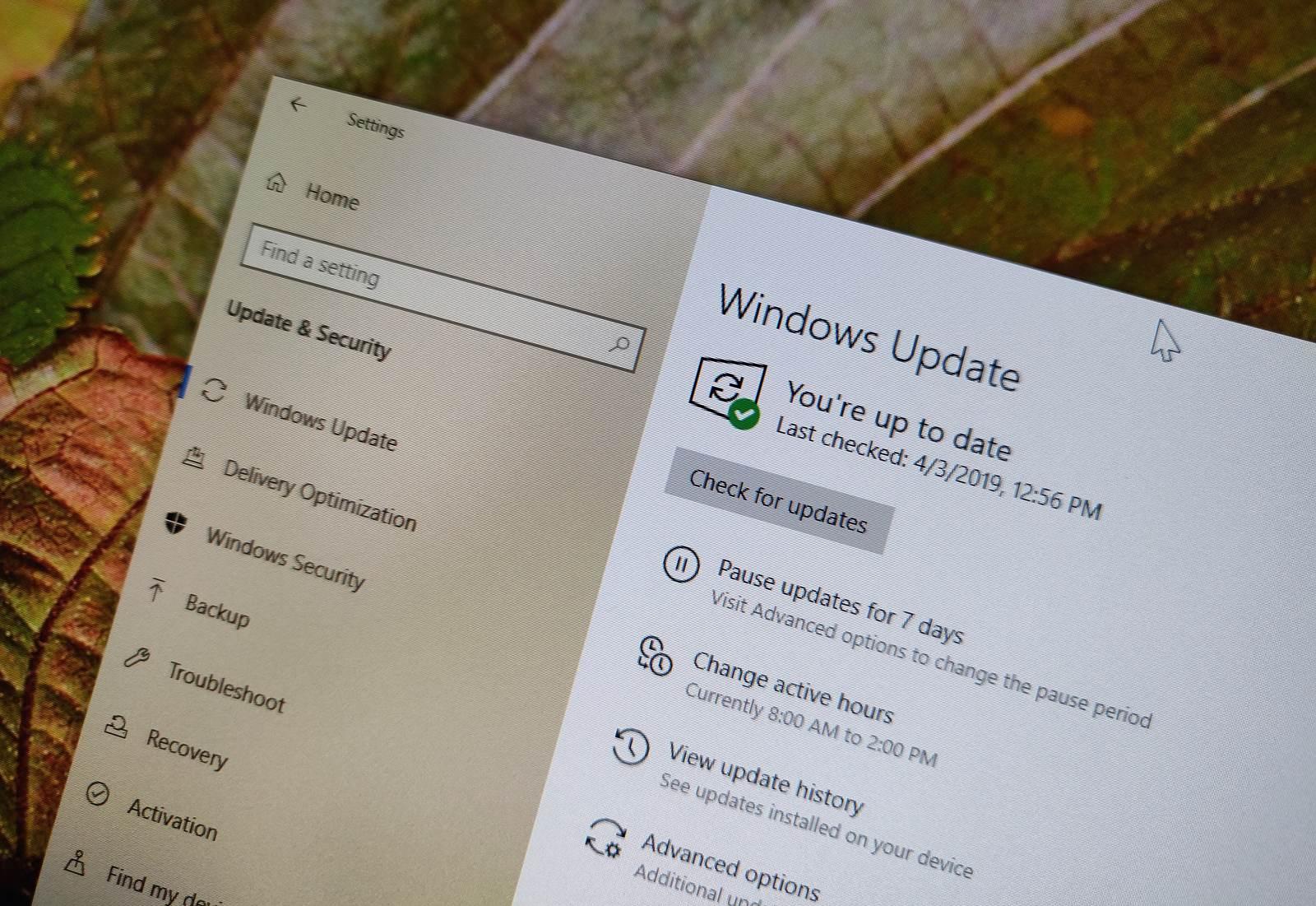 Windows 10 version 1903 update settings
