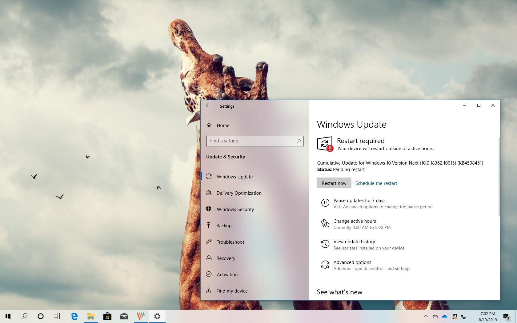 Windows 10 build 18362.10015 download