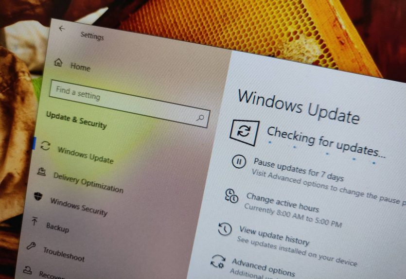 Checking for updates for Windows 10 on 2019