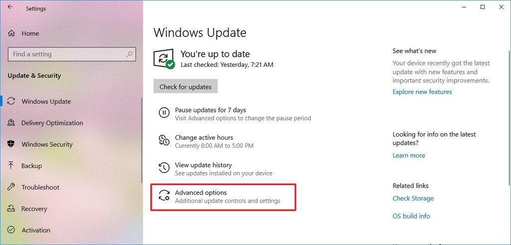Windows Update settings with Advanced options
