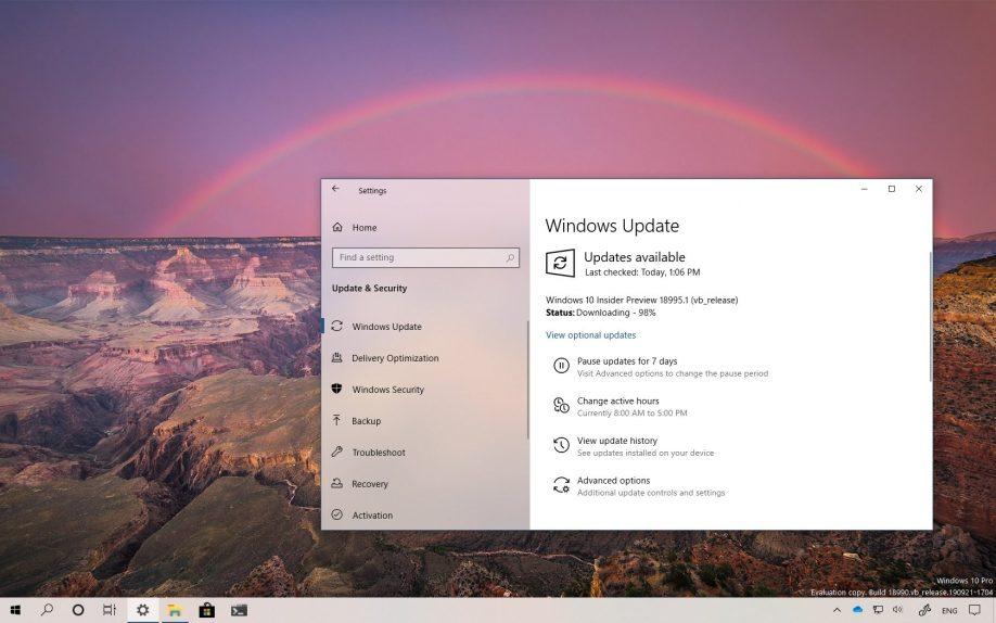 Windows 10 build 18995