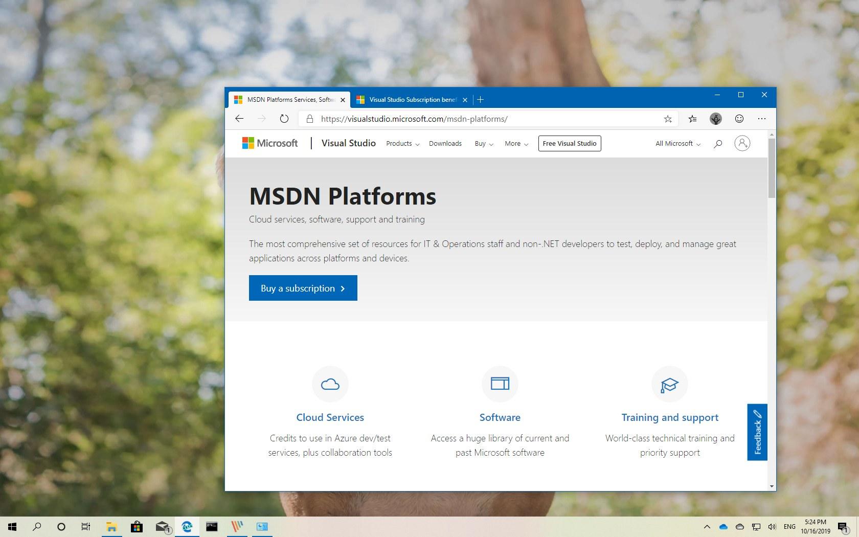 Update Windows 10 Version 1909