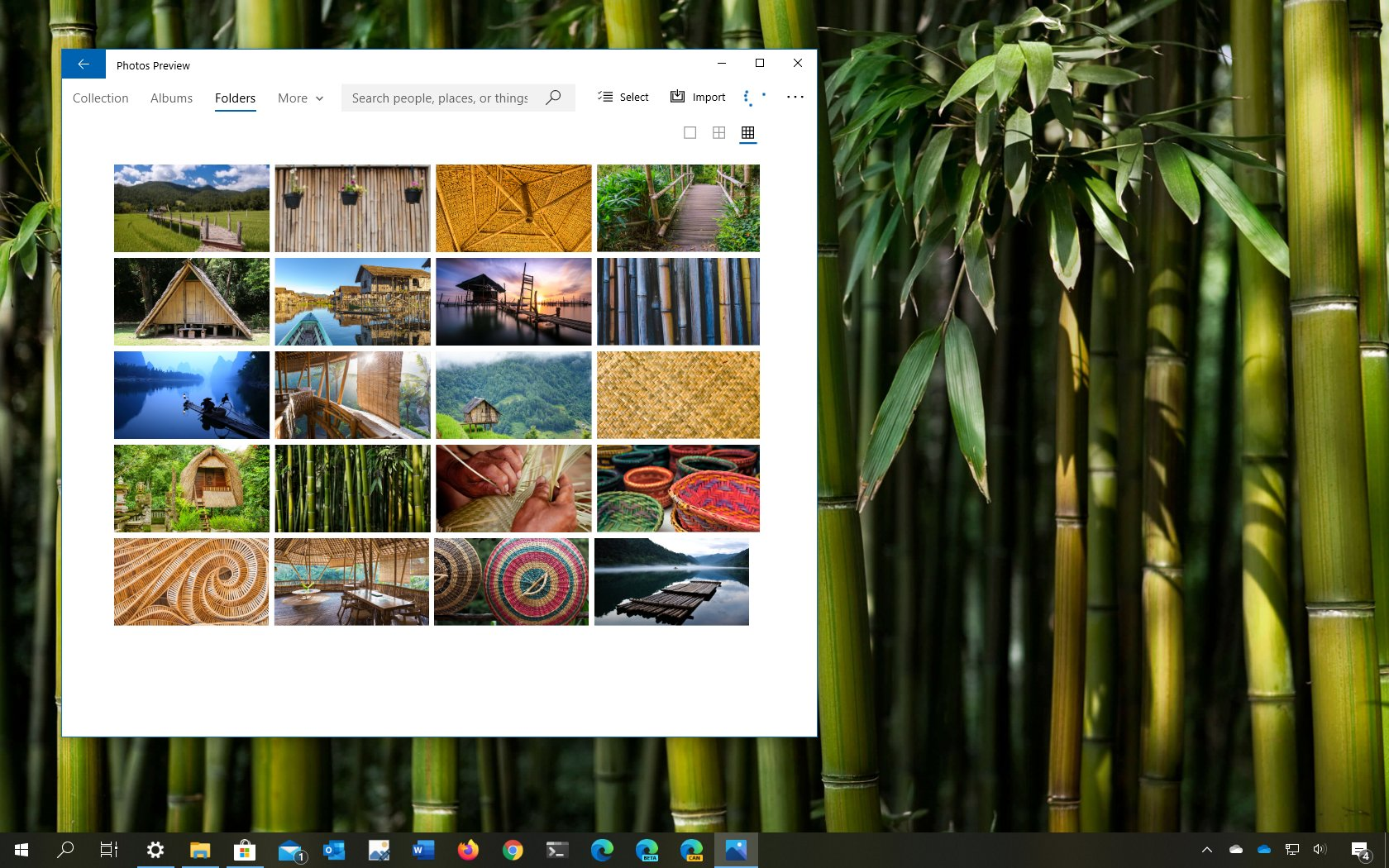 World of Bamboo theme for Windows 10